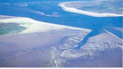 Priele bei Niedrigwasser im Wattenmeer